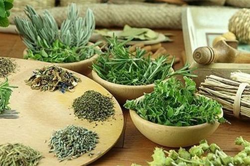 Какие травы и растения помогают : депрессии и